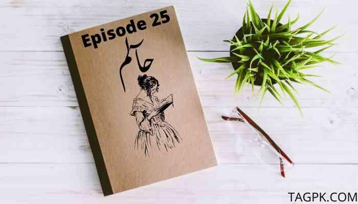 Haalim Episode 25 PDF Download