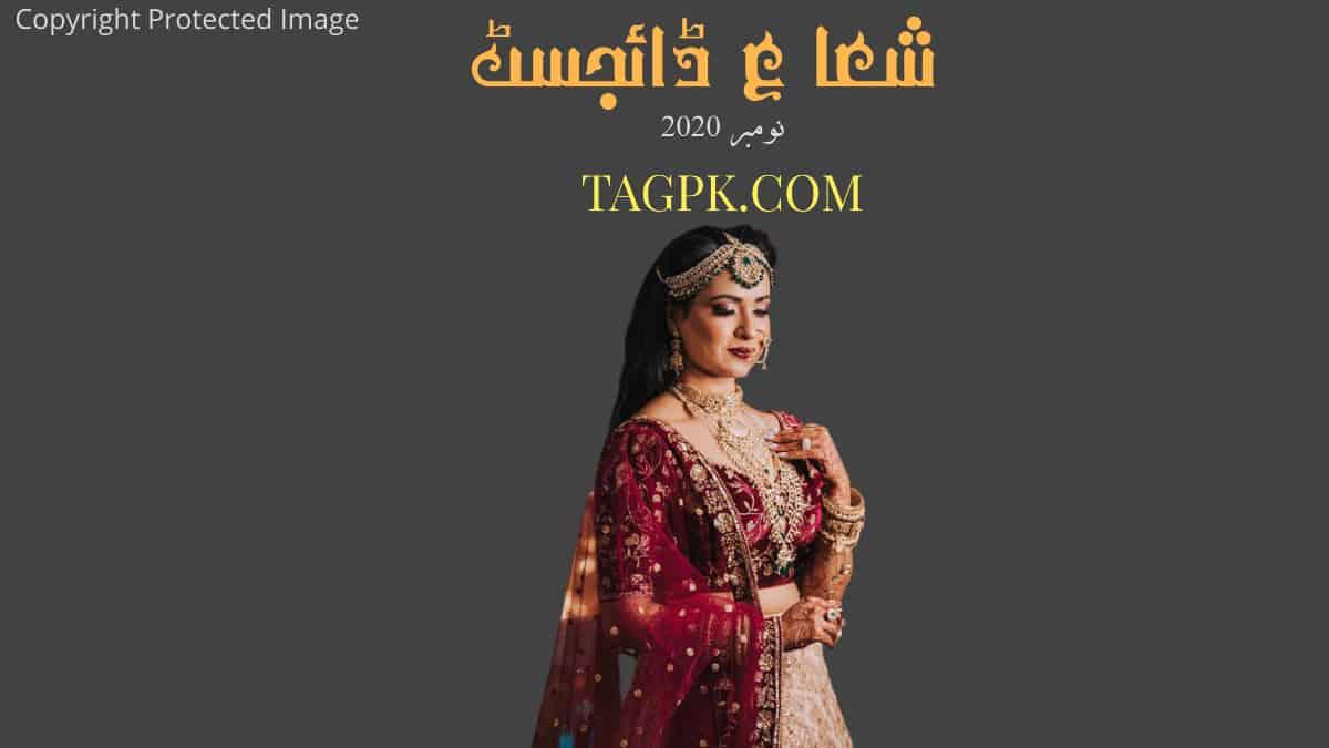 Shuaa Digest November 2020 Free Download PDF