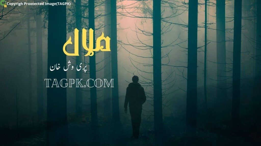 Malaal novel by Pariwash Khan