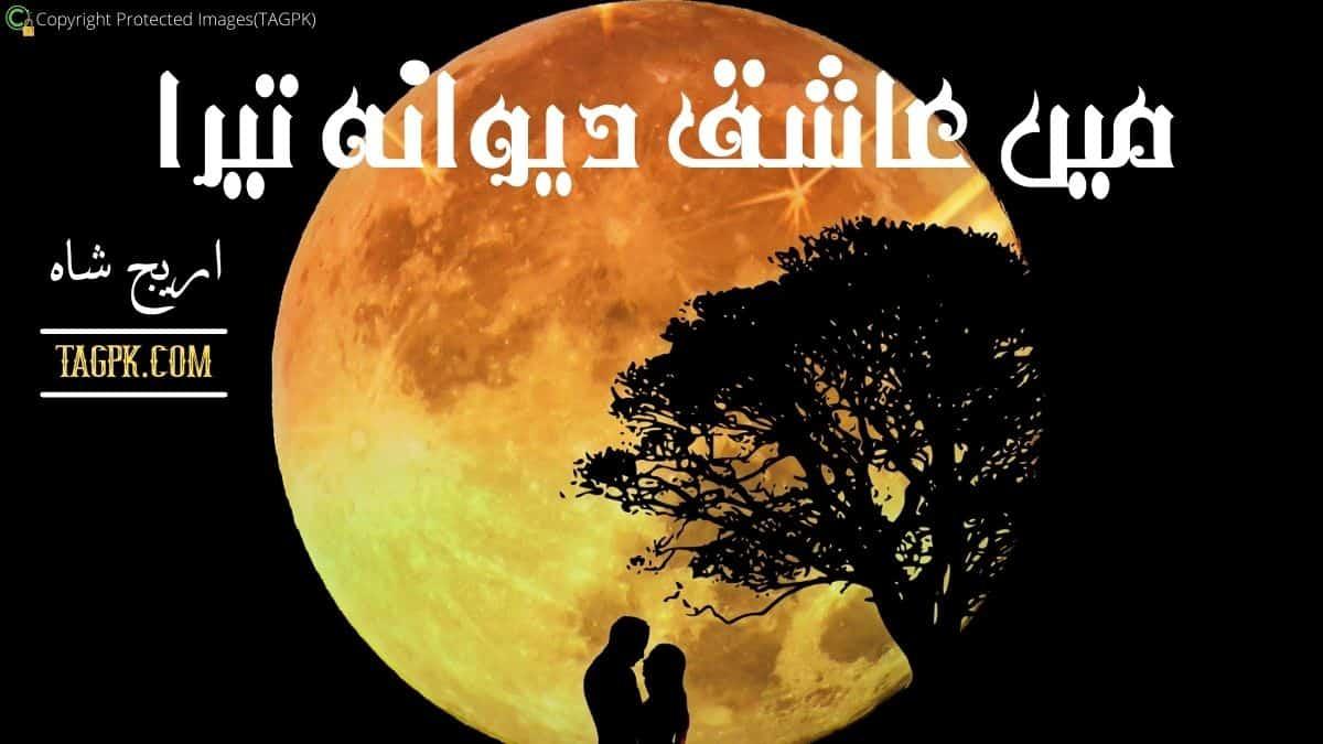 Main Aashiq Deewana Tera By Areej Shah Complete Novel Download