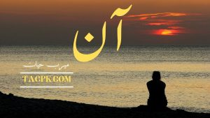 Read more about the article Aan By Meerab Hayat Complete Novel PDF Download