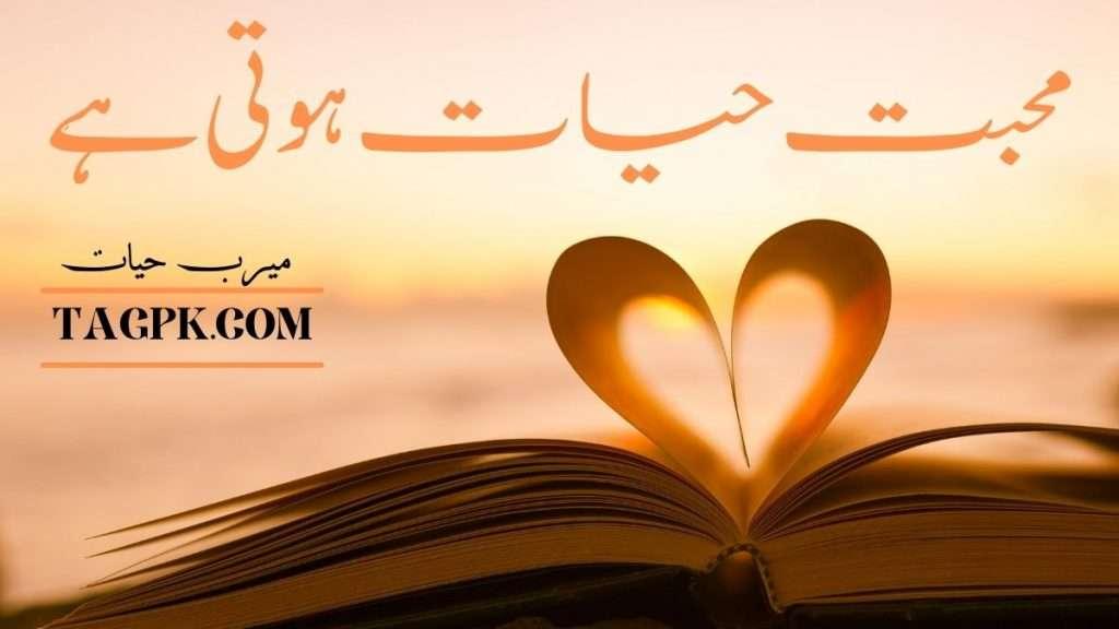 Mohabbat Hayat Hoti Hai By Meerab Hayat