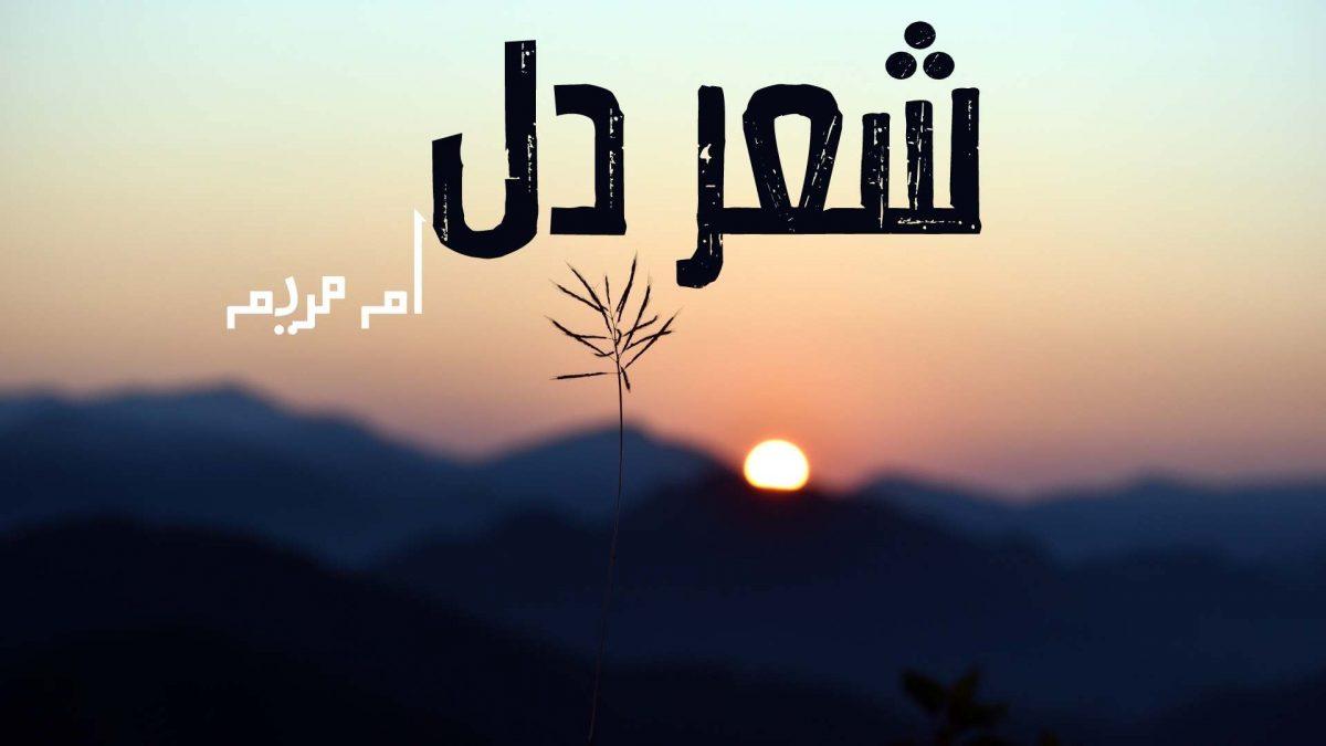 Shehr E Dil Novel By Umme Maryam PDF Download