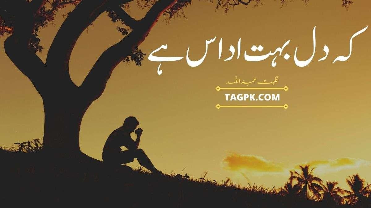 Ke Dil Bohat Udaas Hai By Nighat Abdullah Complete Novel