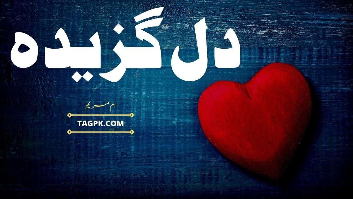 Dil Gazeeda By Umme Maryam Complete Novel Download